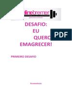 PRIMEIRO DESAFIO - V