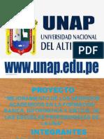 EXPOSICIÓN  DE LA UNA (ADC FINAL)