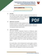 2.00 ESTUDIO IMPACTO AMBIENTAL PARCO