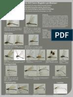 Odonata de la Región Cusco-Perú, registro preliminar