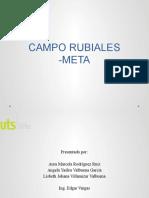 CAMPO RUBIALES -META