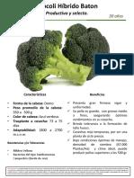 Brócoli-Hib.-Baton-Ficha-Técnica-y-Fotos-en-campo.pdf