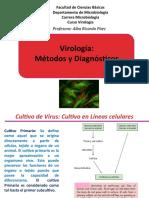Clase Virología-Métodos y Diagnósticos (1).ppt