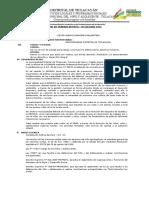 PLAN DE TRABAJO ACTUAL.docx