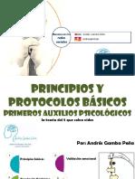 MEMORIAS Primeros Auxilios Psicologicos - Andrés Gamba Peña (1).pdf