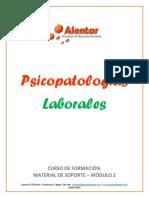 Material Psicopatología Laboral - Módulo 2.pdf