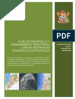 DIAGNOSTICO ESTRATEGICO PEDERNALES 2014_14-11-2014.pdf