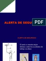 DIAPOSITIVA DE ALERTA DE SEGURIDAD fatalidad[1]
