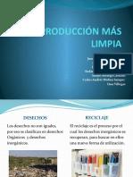 PML.pptx