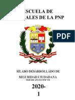 SEGURIDAD CIUDADANA - 3ER AÑO.docx