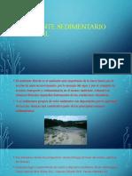 Ambiente sedimentario fluvial avance.pptx