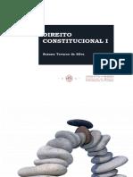 Suzana Tavares da Silva - Direito COnstitucional I