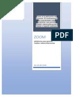 Manual de Zomm.pdf