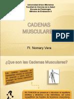 cadenas musculares.ppt