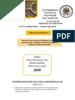 informe de sapo espinal semana 8.docx