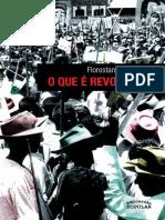 FERNANDES, Florestan. O Que é Revolução.pdf