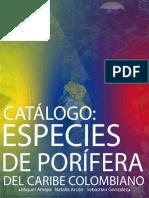 CATÁLOGO DE PORIFERA.