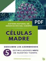 Ebook_Células_Madre_y_Nrf2.01.pdf