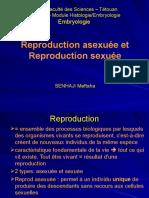 Diaporama Reprod asex & sex