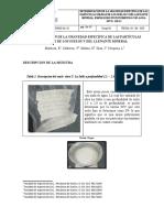 gravedad especifica del suelo (1).docx