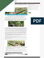Aprende a utilizar tallo del plátano para la jardinería vegetal. – rincón de maestros.pdf