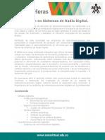 Modulacion_Sistemas_Radio_Digital
