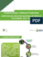 Presentacion_Apertura_Registro_Perfiles_2016_2018