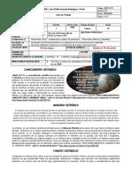 Guia 1- 10-Conocimiento histórico   II periodo - copia (1)