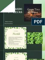 Herbologia Litúrgica LV (Cultivando Ervas) (Grupo Toca Da Bruxa) Magia