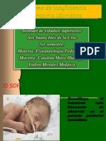 sndromedeinsuficienciarespiratoriaidioptica-121011162607-phpapp02.pdf
