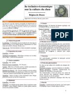 Fiche_technico_economique_chou_Dosso_Juillet2017