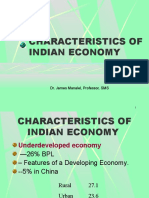 CHARACTERISTICS OF INDIAN ECONOMY--2010ppt