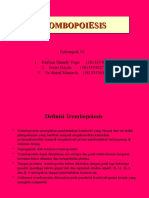 PPT_KELOMPOK15_ TROMBOPOESIS