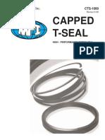 MPI Seals catalog CTS-1000