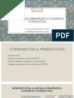1. Modelo CC 08.02.2020.pdf