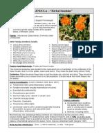 Herb Med 2 2010 - Calendula W3.doc