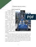 Cimitirul Vesel de la Sapanta.doc