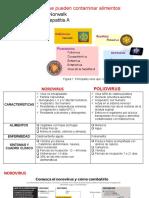 MICROBIOLOGÍA DE ALIMENTOS - VIRUS - ETAS