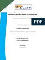 117140018-14-Gutierrez Mapa conceptual agentes de marketing