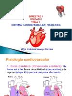 1 ANATO SIST CARDIOVASCULAR. FISIOLOGIA (1).ppt