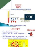 1 ANATO SIST CARDIOVASCULAR. FISIOLOGIA (1)