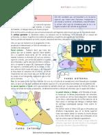 fosas nasales.pdf