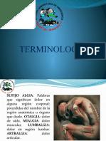 Presentación Clase 3 Terminología.pptx
