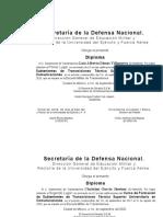 DIPLOMA DE 1o. 2o. y 3o. AMBOS CURSOS