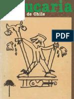 ARAUCARIA_N°2.pdf