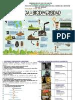 Biodiversidad_basica_y_media