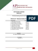 Informe 9 Sistema Endocrino