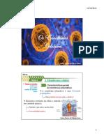 Citologia 02. Envoltórios celulares.pdf