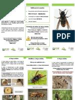 vespa_anexo_vi_folheto_divulgativo.pdf