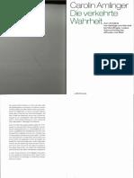 Amlinger_2014_DieverkehrteWahrheit.pdf